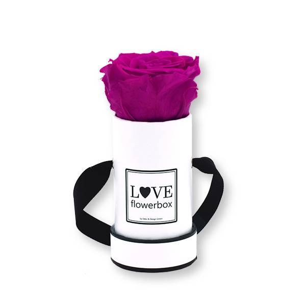 Flowerbox_rosenbox_blumenbox_rund_weiss_Mini_infinity_Rosen_purpur_violett_lila.jpg