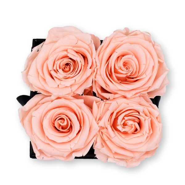 Rosenbox Infinity Rosen pastell rosa | Flowerbox eckig | S Modern white