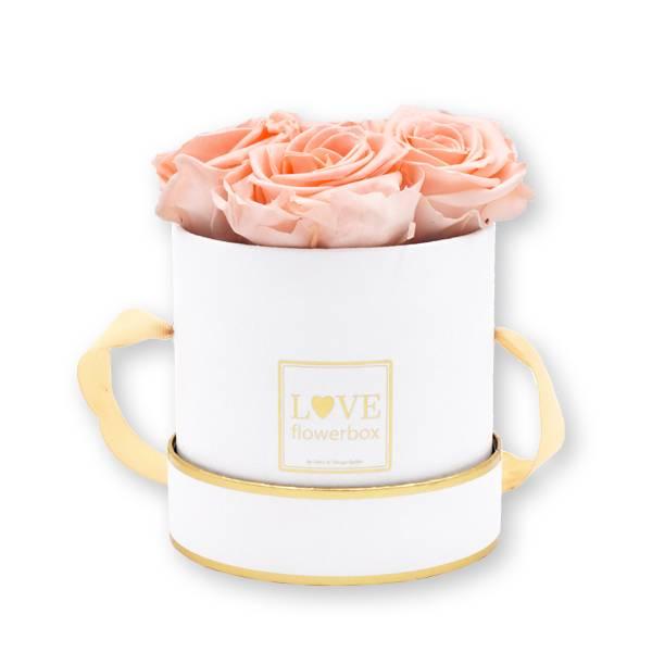 Flowerbox Modern gold | Small | Rosen Pastellrosa