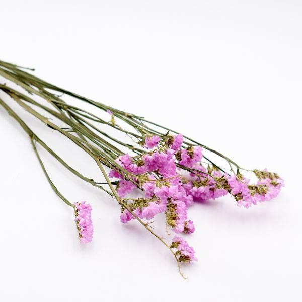 Love_dried_flowers_Trockenblumen_getrocknete_Blumen_Statice_light_pink_5_Stiele_2.jpg