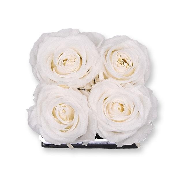 Rosenbox Infinity Rosen weiss | Flowerbox eckig | S Modern white