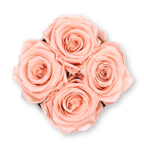 Rosenbox Infinity Rosen pastell rosa | Flowerbox | Blumenbox | S Modern black
