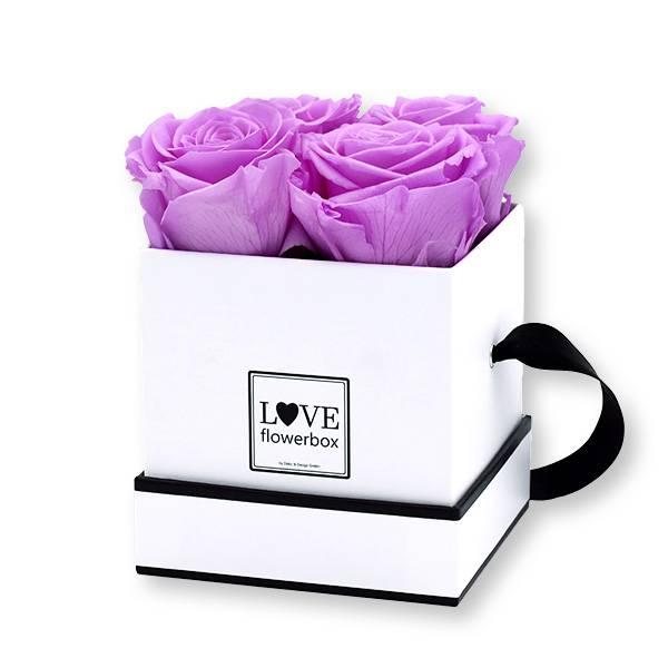 Flowerbox Modern | Small | Rosen Baby Lilli (Flieder)