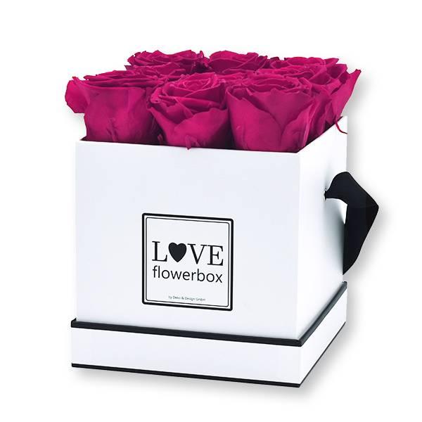 Flowerbox Modern | Medium | Rosen Raspberry (Himbeere)