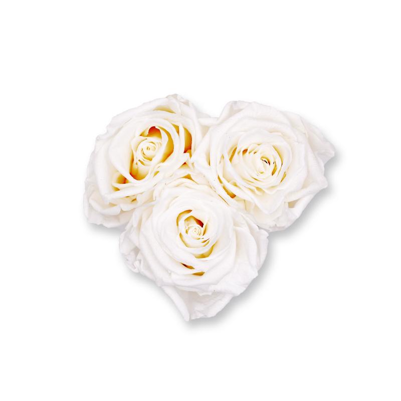 Rosenbox Herz Infinity Rosen weiss | Flowerbox Herzbox | XS white gold
