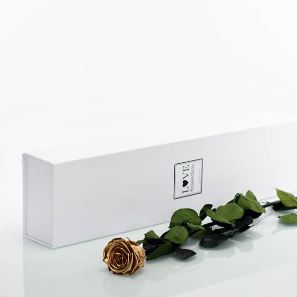 Flowerbox Lang | Classic | Rosen Gold