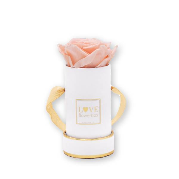 Flowerbox_rosenbox_blumenbox_rund_weiss_gold_Mini_infinity_Rosen_porcelain_pink.jpg