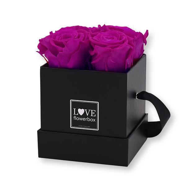 Flowerbox Modern | Small | Rosen Purpur (Lila)