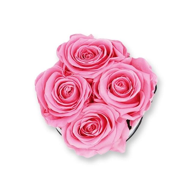 Rosenbox Infinity Rosen baby rosa | Flowerbox | Blumenbox | S Modern white