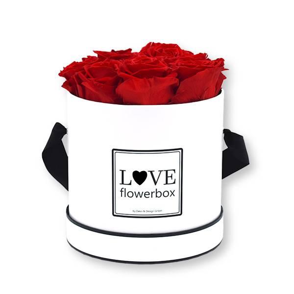 Rosenbox Infinity Rosen rot | Flowerbox | Blumenbox | Modern Modern white