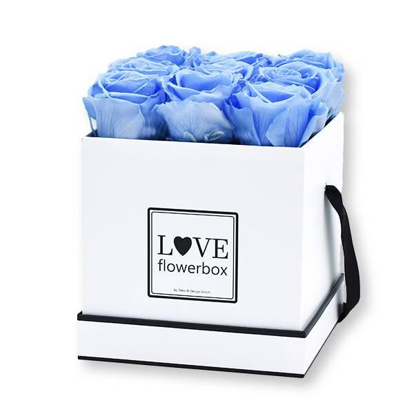 Flowerbox Modern   Medium   Rosen Baby Blue (Hellblau)