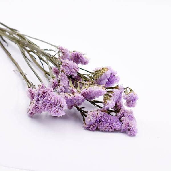 Love_dried_flowers_Trockenblumen_getrocknete_Blumen_Statice_flieder_5_Stiele.jpg