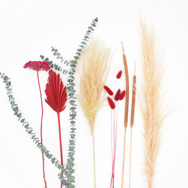 Trockenblumen Set Rot