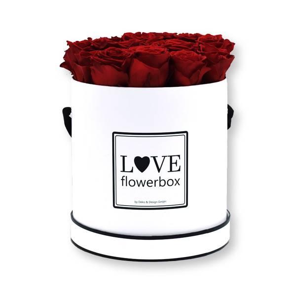 Flowerbox_rosenbox_blumenbox_rund_Large_weiss_Infinity_Rosen_burgundy_bordeaux.jpg