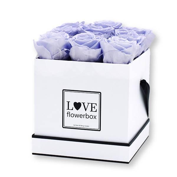 Flowerbox Modern   Medium   Rosen Cool Lavender (Eisblau)