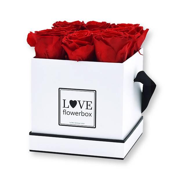 Flowerbox Modern | Medium | Rosen Vibrant Red (Rot)