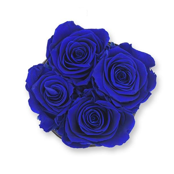 Rosenbox Infinity Rosen dunkel blau | Flowerbox | Blumenbox | S Modern w gold