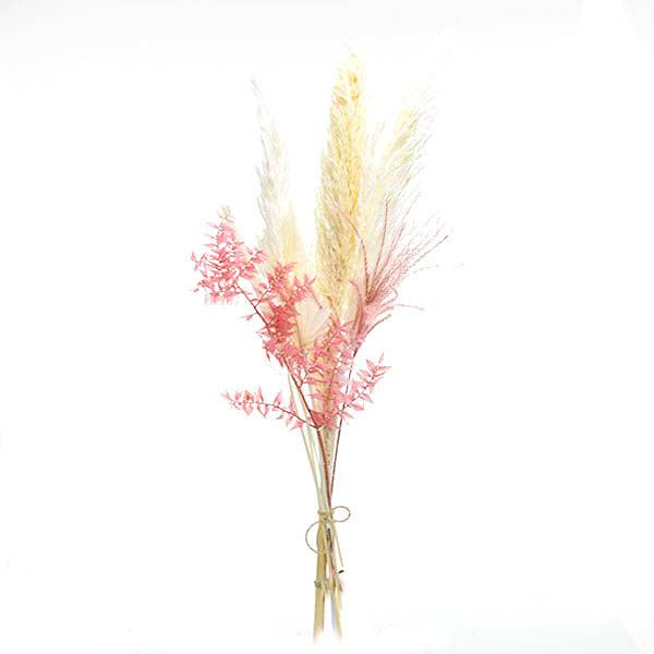 Trockenblumen Mix | Set | Zartliebe | Trockenblumen weiss-rosa-pastell | Zebragras gebleicht, Ruskus, Palmspear 2