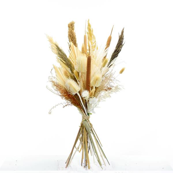 Trockenblumenstrauß Boho Liebe L | Trockenblumen weiss-natur-braun | Pampasgras, Schilfkolben, Palmspear