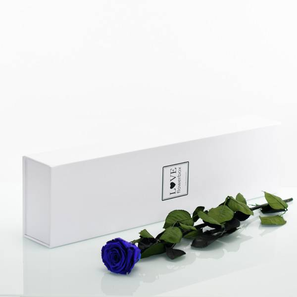 Love_Flowerbox_Langbox_weiss_Infinity_Rose_langstielig_dark_blue.jpg