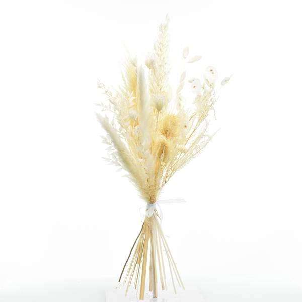 Trockenblumenstrauß Weisse Eleganz M | Trockenblumen weiss-ivory | Pampasgras, Ruskus, Lunaria