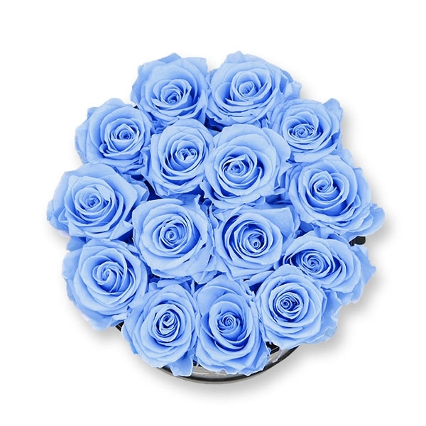 Rosenbox Infinity Rosen hell blau   Flowerbox   Blumenbox   L Modern black