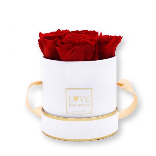 Rosenbox Infinity Rosen rot | Flowerbox | Blumenbox | S Modern weiss gold