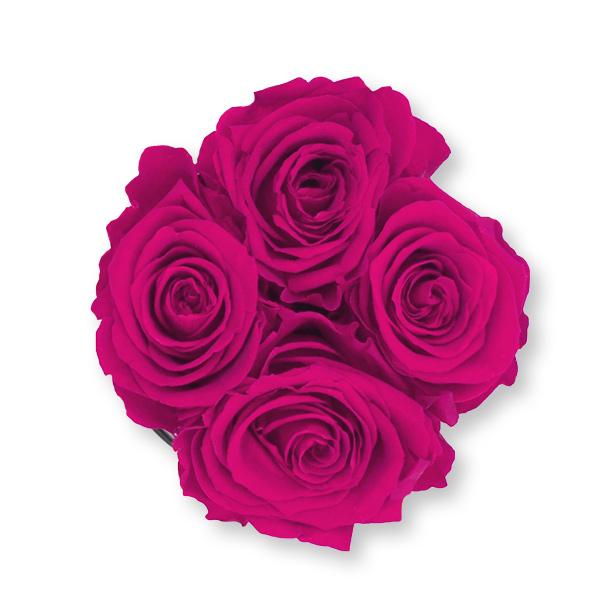 Rosenbox Infinity Rosen himbeere | Flowerbox | Blumenbox | S Modern w gold