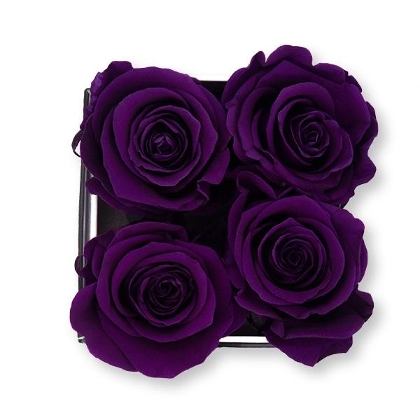 Rosenbox Infinity Rosen dunkel lila | Flowerbox eckig | S Modern white
