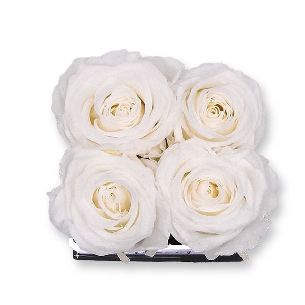 Rosenbox Infinity Rosen weiss | Flowerbox eckig | S Modern black