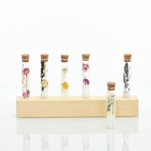 Love_Dried_flowers_Reagenzglas_mit_Trockenblumen_Gastgeschenk_Hochzeit_weiss_Eukalyptus.jpg
