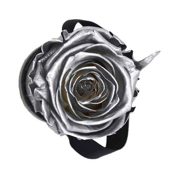 Modern   Mini   Silver (Silber)