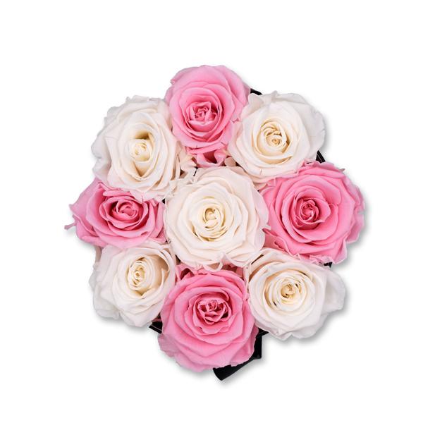 Modern | Medium | weiss-rosa