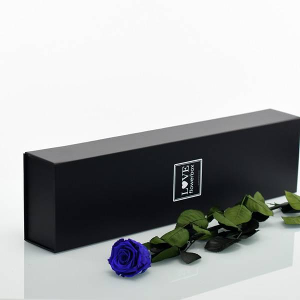 Love_Flowerbox_Langbox_schwarz_Infinity_Rose_langstielig_dark_blue_dunkelblau.jpg