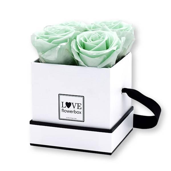 Flowerbox Modern | Small | Rosen Minty Green (Mint)