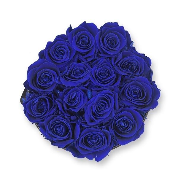 Modern | Large | Dark Blue (Dunkelblau)