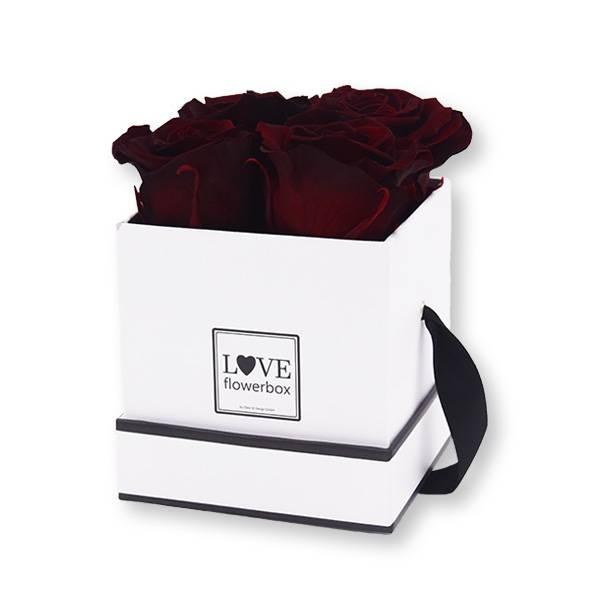 Flowerbox Modern | Small | Rosen Burgundy (Bordeaux)