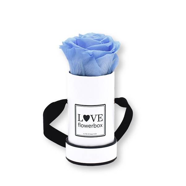 Flowerbox_rosenbox_blumenbox_rund_weiss_Mini_infinity_Rosen_babyblue_hellblau.jpg
