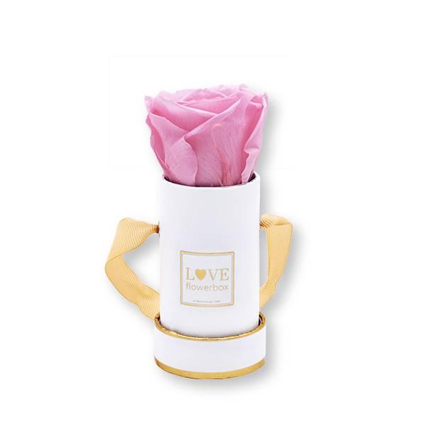 Flowerbox_rosenbox_blumenbox_rund_weiss_gold_Mini_infinity_Rosen_bridalpink_rosa.jpg