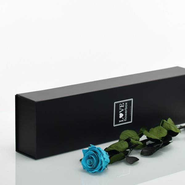 Flowerbox Lang | Classic | Rosen Aqua