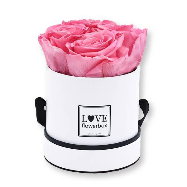 Flowerbox Modern | Small | Rosen Baby Pink (Rosa)