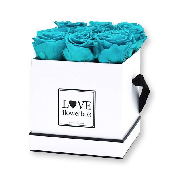 Flowerbox Modern | Medium | Rosen Aqua (Türkis)