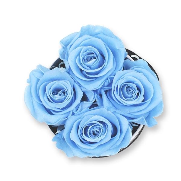 Rosenbox Infinity Rosen hell blau   Flowerbox   Blumenbox   S Modern black