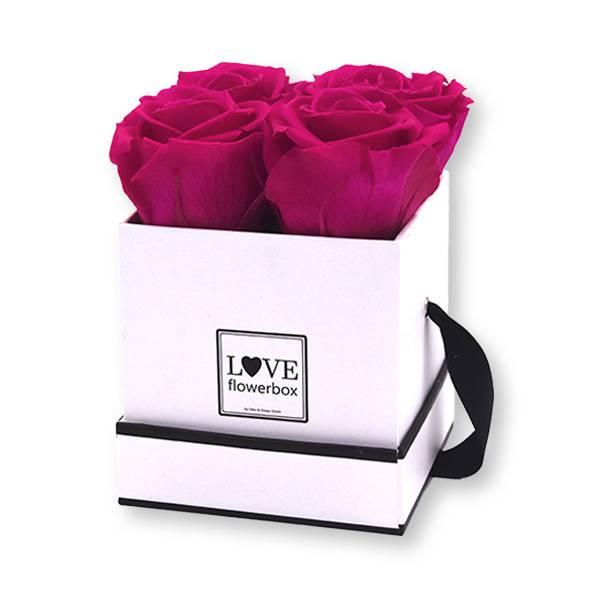 Flowerbox_rosenbox_blumenbox_eckig_Small_weiss_Infinity_Rosen_HotPink.jpg