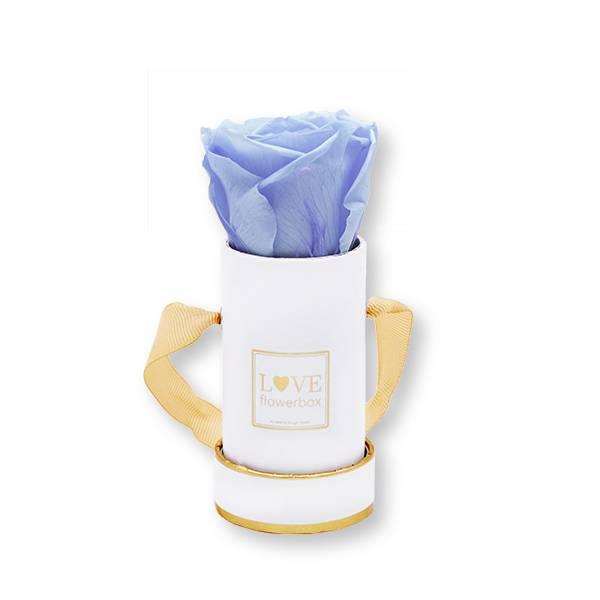 Flowerbox Modern gold | Mini | Rosen Baby Blue (Hellblau)