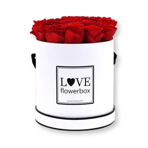 Rosenbox Infinity Rosen rot | Flowerbox | Blumenbox | Large Modern white