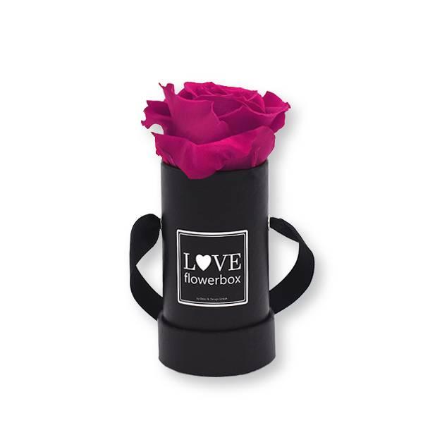 Flowerbox Modern | Mini | Rosen Raspberry (Himbeere)